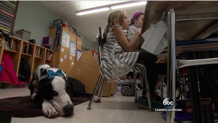 授業の間、足下で寝ているジョージ