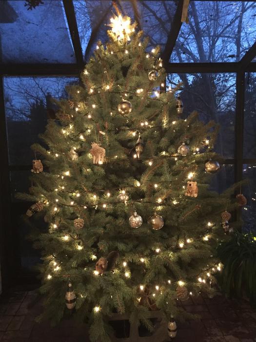 クリスマスツリーの完成!